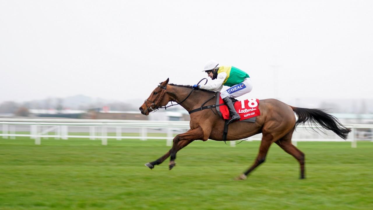 cloth cap horse