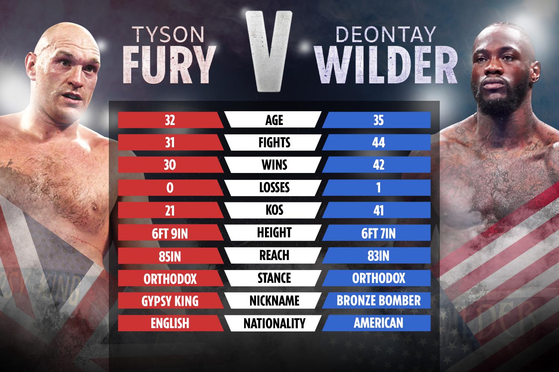 fury wilder comparison